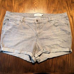 Torrid Grey Denim Cuffed Shorts